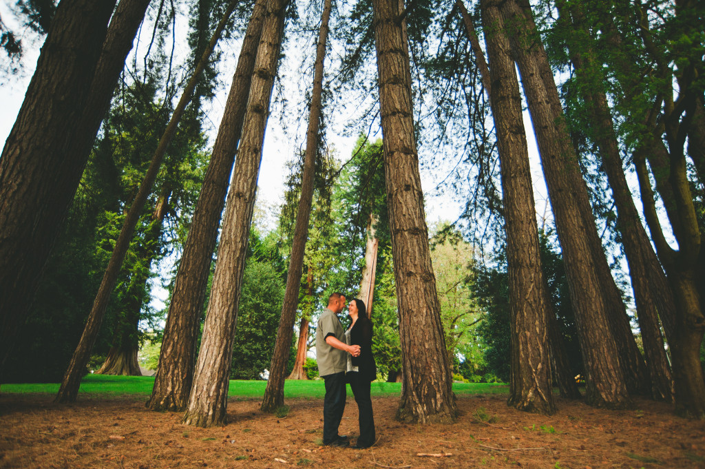 Tall trees engagement photos